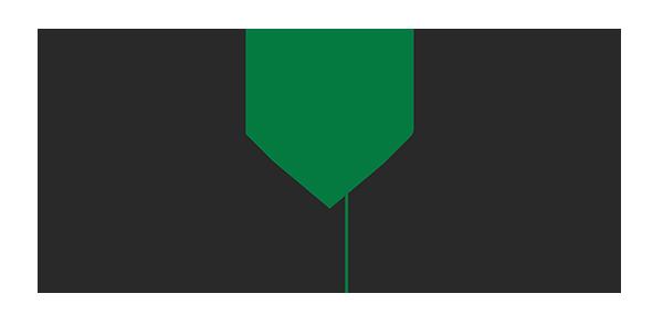 Brace Steel